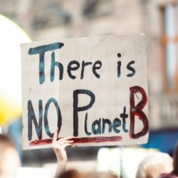 There is no plant B demonstrator sign