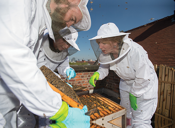 Sam Beath and fellow beekeepers