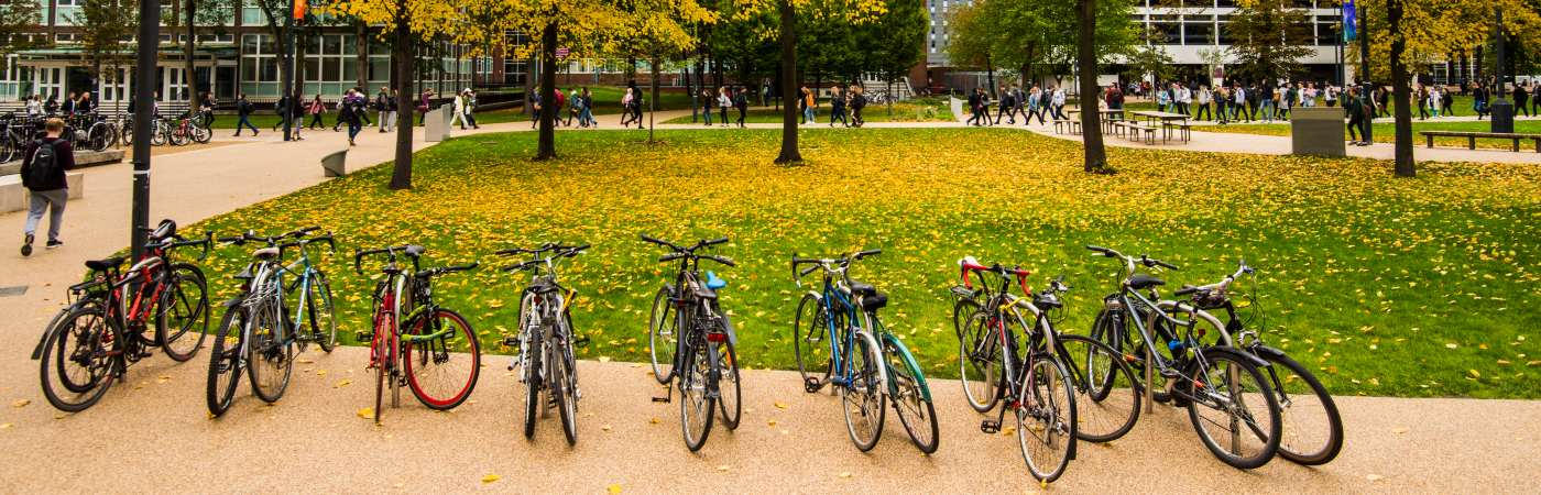 Bicycles in a line with autumn trees in Brunswick Park